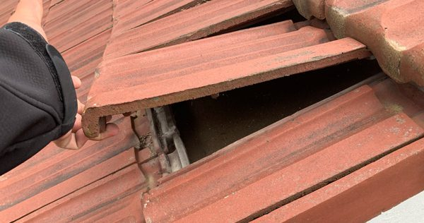 Worker holding up a loose clay tile panel