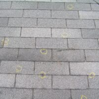 Shingle roof with hail damage marked with circles